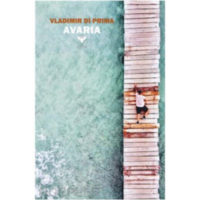 """Avaria"" di Vladimir Di Prima"