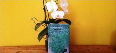 Una storia quasi perfetta – intervista a Mariapia Veladiano di Antonio G. Bortoluzzi